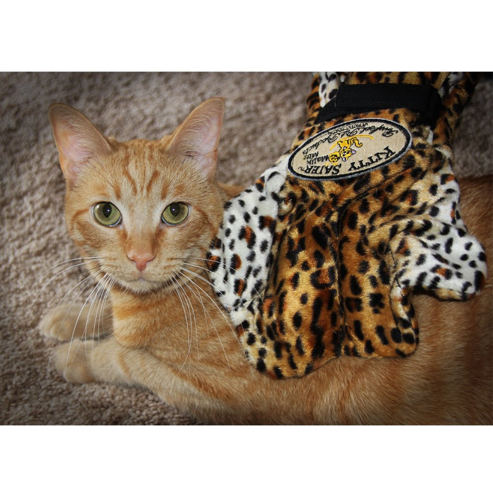Vibrating Massage Mitt For Cats