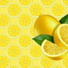 Lemons Kitchen Mat Rug Home Decor - by Blue Skies Plus
