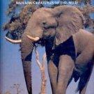 Elephants: Majestic Creatures of the Wild