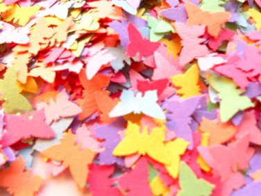 Colorful butterfly confetti butterfly cut outs paper confetti colorful confetti