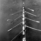 Women practice for rowing competition - 8x10 photo