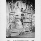 Josephine Baker in cage.  - 8x10 photo