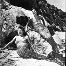 mermaids - 8x10 photo