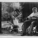 Josephine Baker playing with animals.  - 8x10 photo