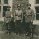 World War I. Female soldier - 8x10 photo