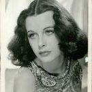 Hedy Lamarr  - 8x10 photo