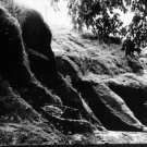 kanneri caves, bombay - 8x10 photo