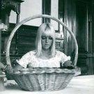 Sylvie Vartan looking at a basket. - 8x10 photo