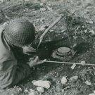 World War II.  German mine removed from Italian field - 8x10 photo
