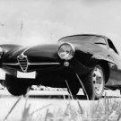 An Alfa Romeo car parked. - 8x10 photo