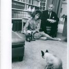 Helen Gurley Brown playing with cat.  - 8x10 photo