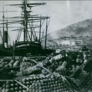 A stock of cannon balls during WWI. - 8x10 photo