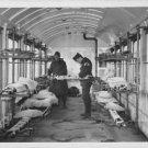 World War II. The French Red Cross. - 8x10 photo