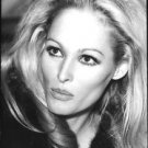 Portrait of Ursula Andress. - 8x10 photo