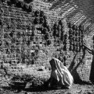 Women fixes house India  - 8x10 photo