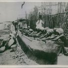 Pearl divers working together. - 8x10 photo