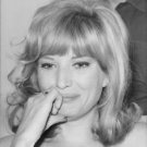 Portrait of Monica Vitti. - 8x10 photo