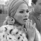 Ursula Andress looking. - 8x10 photo