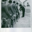 Dogs with their masters lined up for racing, 1940. - 8x10 photo