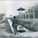 An Allied guard stands in front of the moat built between two rows of electrifie