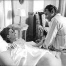 Audrey Hepburn lying. - 8x10 photo