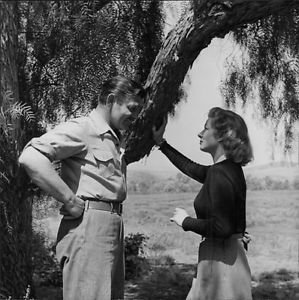 Clark Gable and Greer Garson looking each other. - 8x10 photo