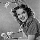 Portrait of Judy Garland - 8x10 photo