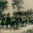 People riding on horse cart wearing gas masks in the forest. - 8x10 photo