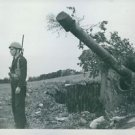 A soldier stands beside a tank that's hidden in some bushes. - 8x10 photo