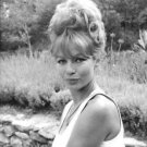 Portrait of Annette Stroyberg. - 8x10 photo
