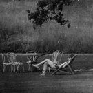 Audrey Hepburn relaxing on chair. - 8x10 photo