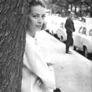 Capucine standing behind tree.  - 8x10 photo