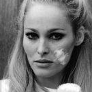 Close up of Ursula Andress.  - 8x10 photo