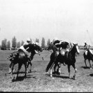 polo match - 8x10 photo