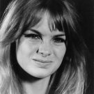 Jean Rosemary Shrimpton given facial expression. - 8x10 photo