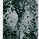 Picture of Cecil Beatons sister wearing a costume from Theatre. Picture taken of
