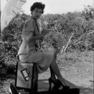 Ava Gardner holding a umbrella and sitting on the tour bag.   - 8x10 photo