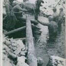 U.S. engineers constructing a wooden bridge over a stream in Germany. - 8x10 pho