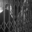Orson Welles with cigar and  Anthony Perkins, behind metal fence. - 8x10 photo