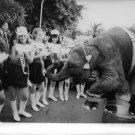 Women standing with elephants, wearing name of Richard Milhous Nixon on their ba