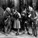 Judy Garland in the movie The Wizard of Oz. - 8x10 photo