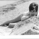 Audrey Hepburn lying on sand, posing for the camera. - 8x10 photo