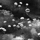 paratroopers - 8x10 photo