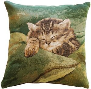 Pillow Decor - Sleeping Cat in Green 14x14 Throw Pillow  - SKU: AB1-8698-02-14