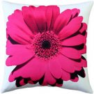 Pillow Decor - Bold Daisy Flower Pink Throw Pillow 20X20  - SKU: PD2-0064-05-20
