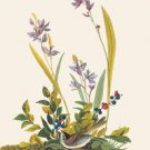 Field Sparrow - 16x24 Giclee Fine Art Print Framed In Gold (20x30 Finished)