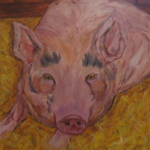 This Little Piggy Is Home- giclee print of original oil painting