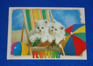 **BRAND NEW** ADORABLE FLORIDA KITTENS ON A BEACH CHAIR POSTCARD BEACHES BALL