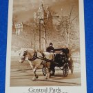 *BRAND NEW* SENSATIONAL CENTRAL PARK NEW YORK CITY POSTCARD MANHATTAN URBAN PARK