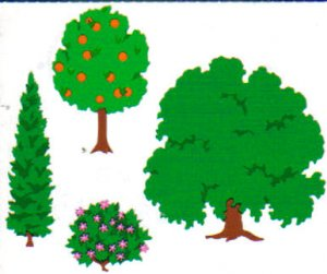 Mrs Grossman's Stickers Trees